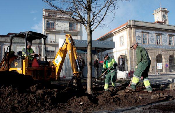 Praça do Almada recebe as primeiras árvores