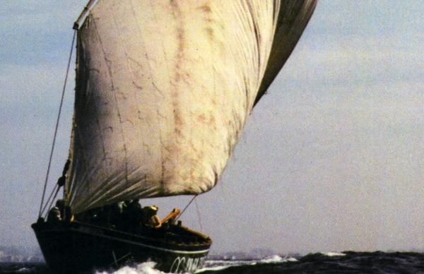 Município poveiro participa no XIV Encontro de Embarcações Tradicionais da Galiza