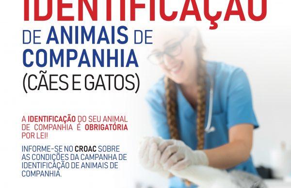 Identifique o seu animal de companhia no CROAC da Póvoa de Varzim