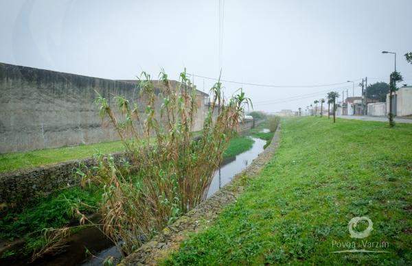 Obras de recuperação das ribeiras da Barranha e das Pedras Negras em Aguçadoura
