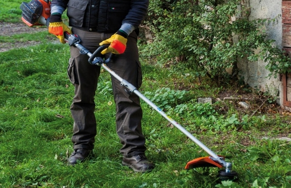 Fim do prazo para limpeza de terrenos florestais